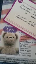nounours-passport-and-boarding-pass