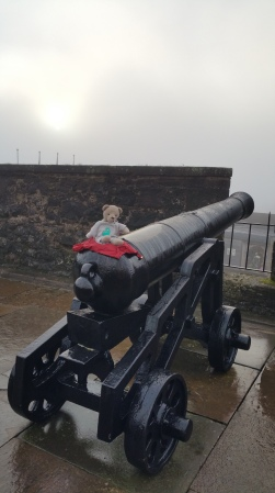 on-a-cannon
