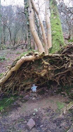 under-a-tree