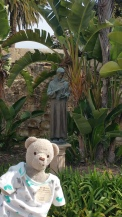 St Francis and I