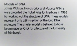 DNA in Scotland