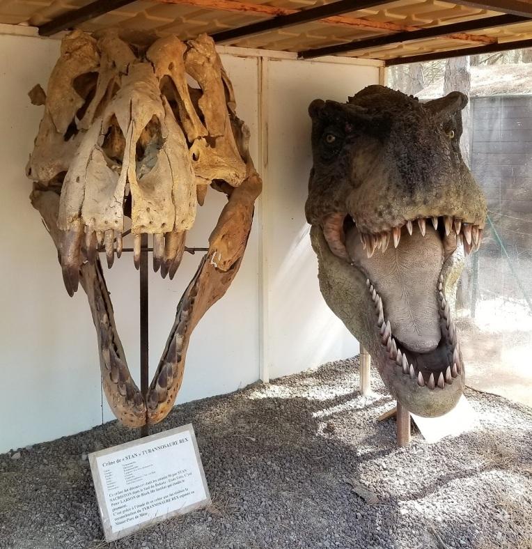 Dinosaurs08